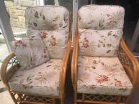 Set of 2 Conservatory chairs