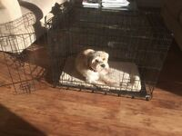As new pet cage with bed.