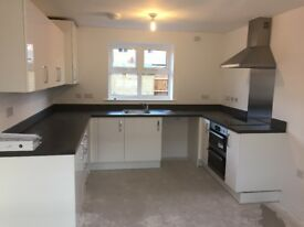 Kitchen - Brand New with Appliances