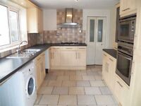 Large 3 Bedroom House in Excellent location in Sandfields Swansea