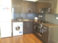 Spacious & modern 2 double bedroom flat in Aldgate East ideal for 2 working couples or Students!!