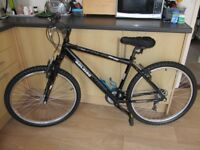 Adult / Teenagers, mountain bike