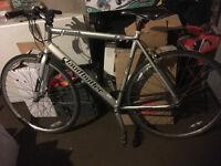 "Claud Butler Chinook silver Road bikes : Flat bar 22"""