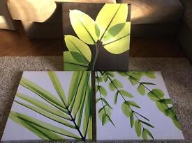 NEXT leaf canvas pictures