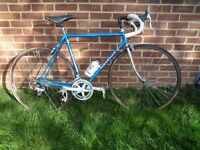 Vintage Classic Pinarello Steel and Chrome Bike Bicycle L'Eroica Eroica Mint
