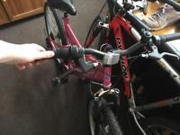 Ladies maximus mountain bike