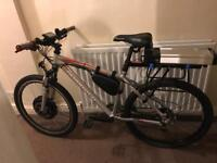 Powerful ebike for sale