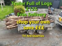 Logs fire wood trailer load £125 save £££ cut them yourself