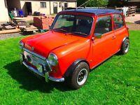 classic austin mini