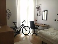 Room to rent in Student Property