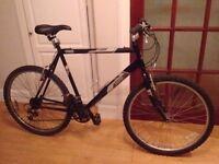 """Men's Raleigh Firefly Bike 21"""" frame"""