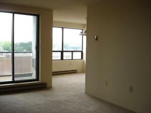 Walk Downtown, Close to Shopping! 2 Bed. $1009.00 inclusive! London Ontario image 7