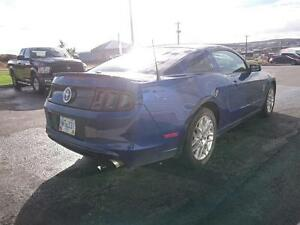 2013 Ford Mustang 2dr Cpe St. John's Newfoundland image 4