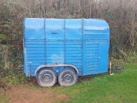 Rice horsebox trailer