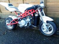 MINI MOTO BLATA REP WATER COOLED CUSTOM STREETFIGHTER STYLE BEAST