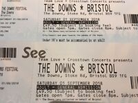 2 x Downs Festival Tickets for £90