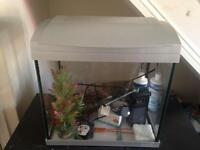 Fish tank 40 litres with accessories