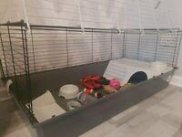 Indoor Rabbit Cage and Accessories