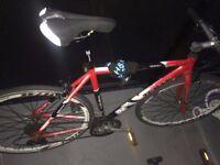 Teman Pro-3.0 / Pro X Aspiration carbon frame hybrid road bike for sale