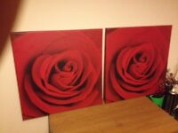 2 x small rose pictures