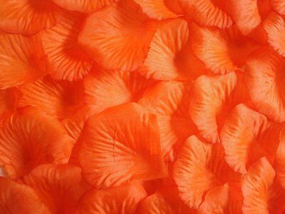 Decorazioni Matrimonio Arancione : 100 x arancione petali di rosa in seta matrimonio decorazioni per la