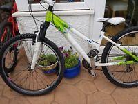 Girls mountain bike 14 inch frame
