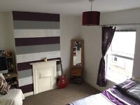 Comfortable three-bedroom house in Rosemount, £500 pcm