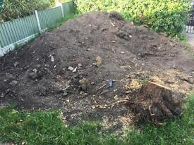 Free soil an tree stump will pay up to 100 pounds if someone will take all away