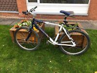 """Adult Dawes hybrid bike suitable for 5ft 8"""" to 6ft"""