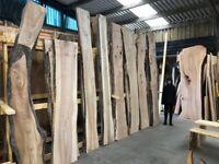 Scottish Hard Wood Slabs for Sale, Oak, Elm, Yew, Spalted Beach, waney edge wood