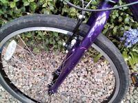 Ridgeback 24 child bicycle