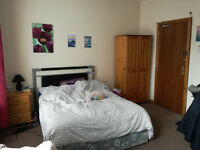 Large room to rent near Lisburn Road/Queens University