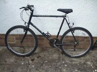 raleigh amazon gents bike. in very good condition space required,