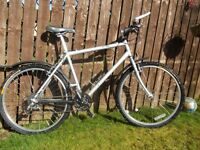 Adult lightweight fully serviced mountain bike , in perfect mechanical condition