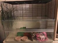 Gerbil / Rat / Degu glass tank with caged top