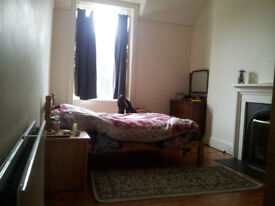 Flatmate wanted for creative, friendly, warm flat in Toll Cross/Bruntsfield