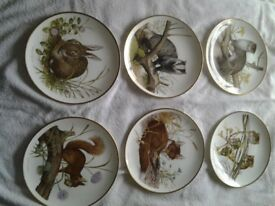 Wedgewood Bone china Wildlife of Britain, Spink Limited edition, 6 plates