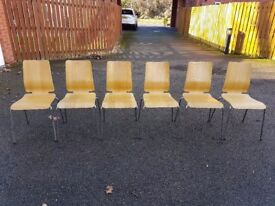 6 Ikea Oak Gilbert Bentwood Chairs FREE DELIVERY 869