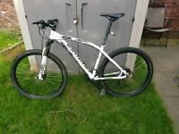 Mountain Bike *specialized*