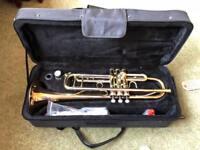 Sebastian Buckley Trumpet