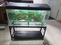 3 foot fish tank with stand, heater and pump