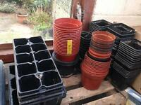 Plant pots, seed trays and propagater ideal for greenhouse