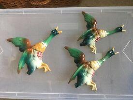 Flying duck wall ornaments