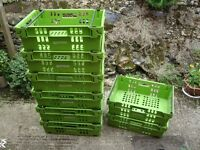 8 heavy duty stackable plastic trays with carrying handles 22 x 14 x 7 inches