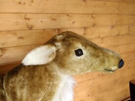 Full size display deer, Christmas or shop item