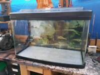 Fish pod tank