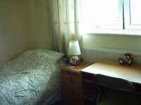 Large Single or Twin room available from 2nd July Short or long lets