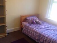 Student room available for rent