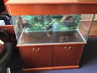 Bespoke fish tank and unit