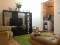 1 bedroom flat in Edmonton N9. Bills Included.